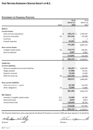 FNESS Financial Statements