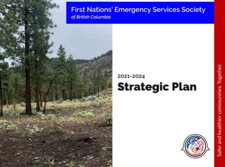FNESS Strategic Plan 2021-2024